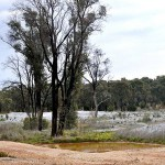 Clean up ordered for Bendigo mine site