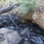 Tonnes of coal fines spill into Wollangambe River