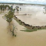 Floods put mining at risk