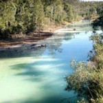 QLD govt told to act over Dee River contamination