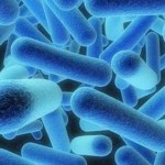 Legionella outbreak forces mining camp closure