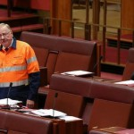 High-viz hijinks cause upset in Senate chamber