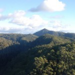 Union to fight Tarkine conservationists