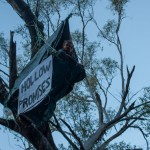 Tree dweller says he'll stay put until Boggabri coal mine expansion halted