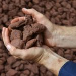 Surging iron ore drives mineral export value towards 2020 peak