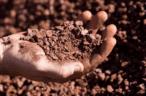 Glencore, Macarthur Minerals ink 10-year Lake Giles iron ore offtake