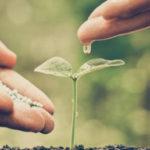 Eco-mining initiative to drive sustainability in Australia