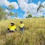 Glencore moves forward with Newlands rehabilitation